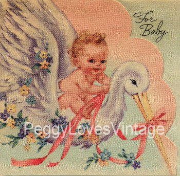 Baby Riding Stork Image